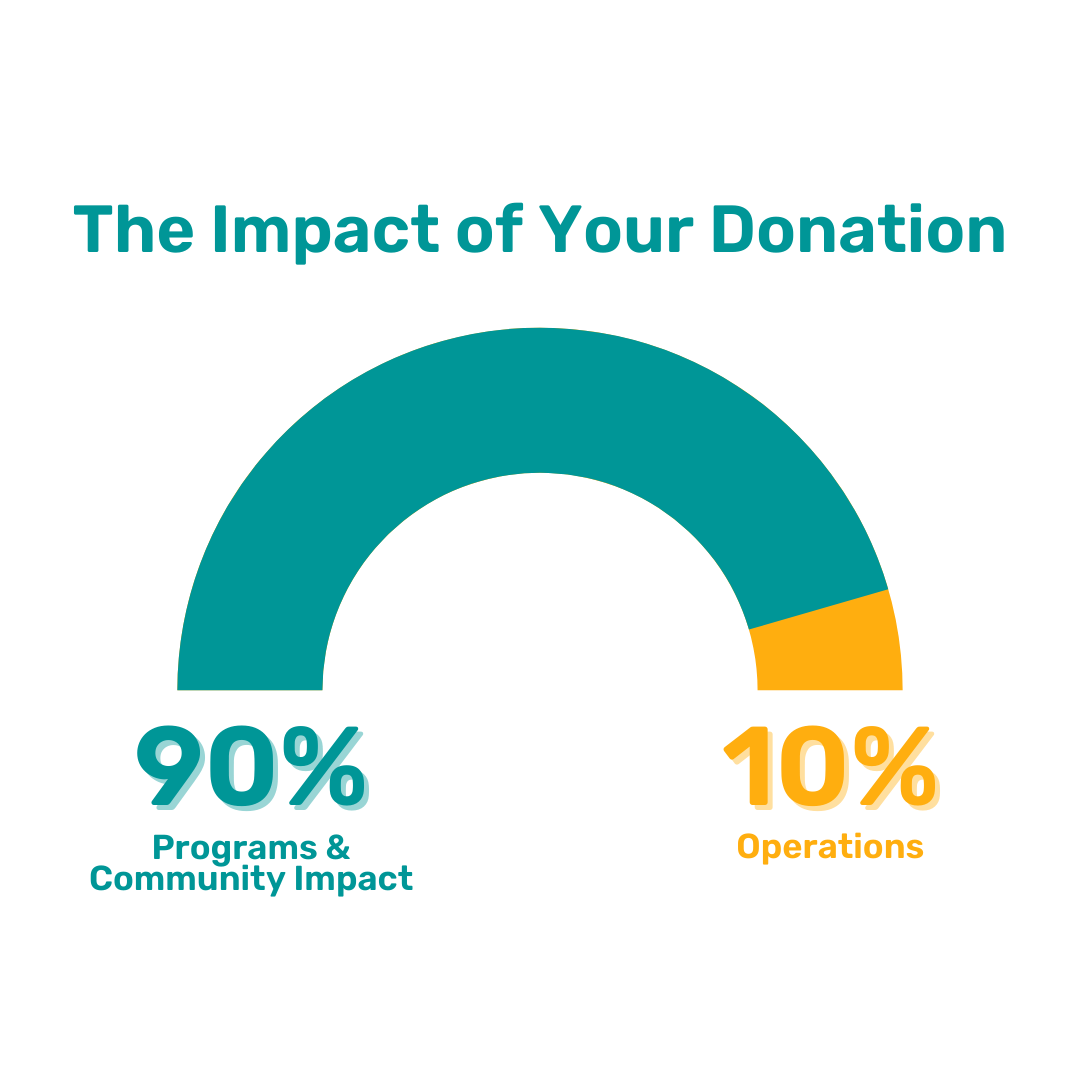 The Impact of Your Donation - Graph