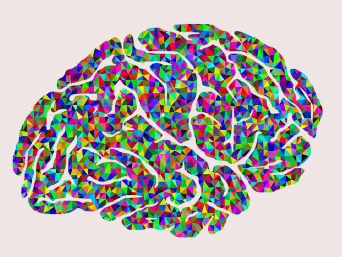 colorful brain - candelen's call to adventure